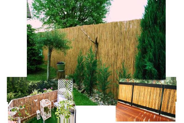 schilfmatte schilfrohr sichtschutz windschutz balkon 100. Black Bedroom Furniture Sets. Home Design Ideas